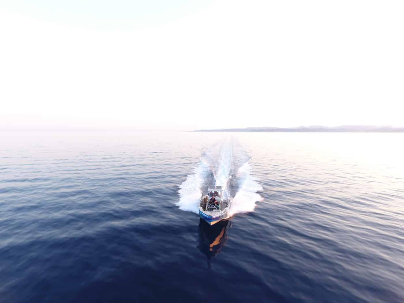 L'Escale Pêche corse